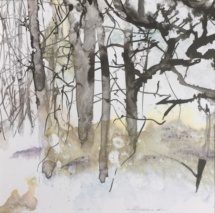 """The Impact of Change in the Arboretum Landscape"""" a solo exhibition (virtual) at the Harvard University Arnold Arboretum"""